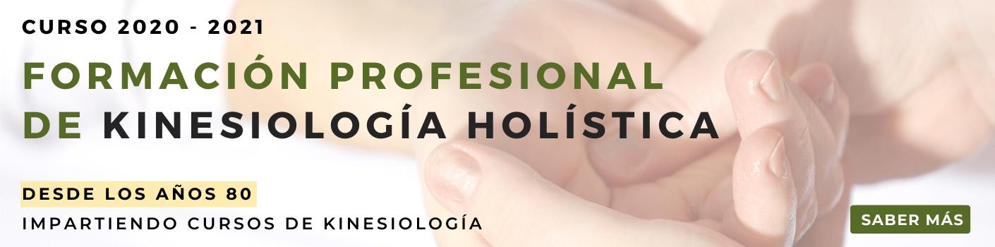 Formación profesional en Kinesiología holística
